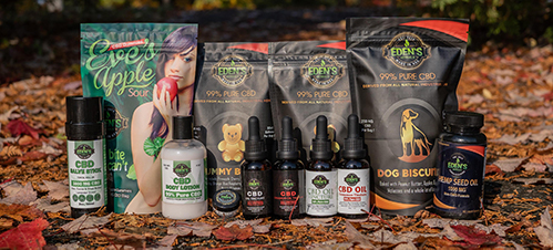 Types of CBD products displayed in leaves