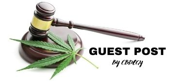 Legal gavel with hemp leaf and title saying guest post by cbd egy
