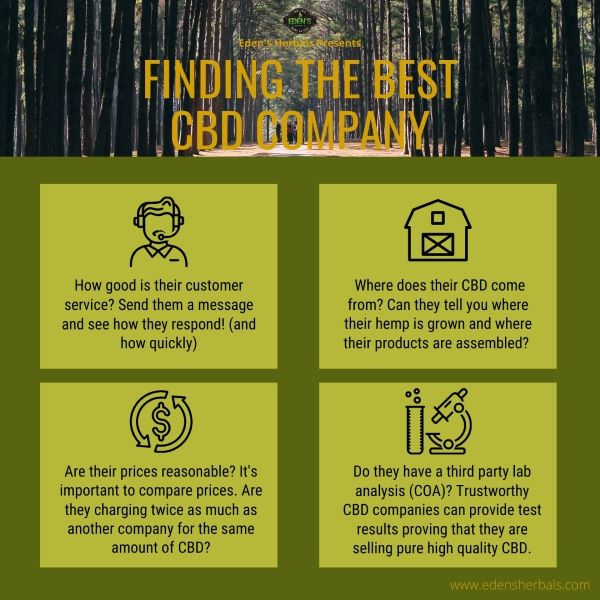 infographic about how to find the best CBD company