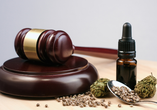 Legal gavel with hemp leaves