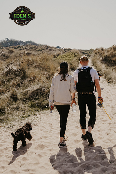Man and woman on healthy walk with their dog