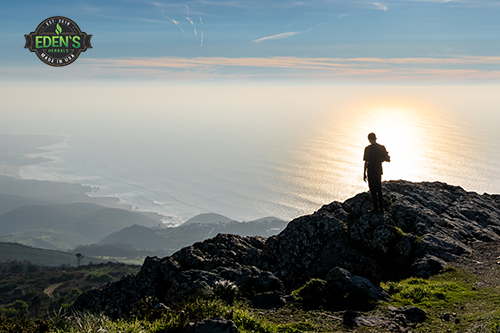 Hiker looking out over beautiful natural landscape