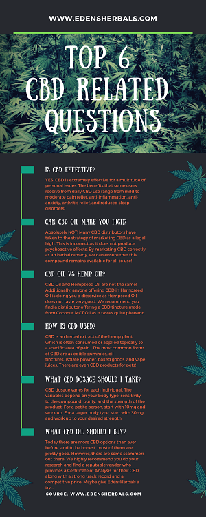 Top 10 CBD Related Questions for First Timers
